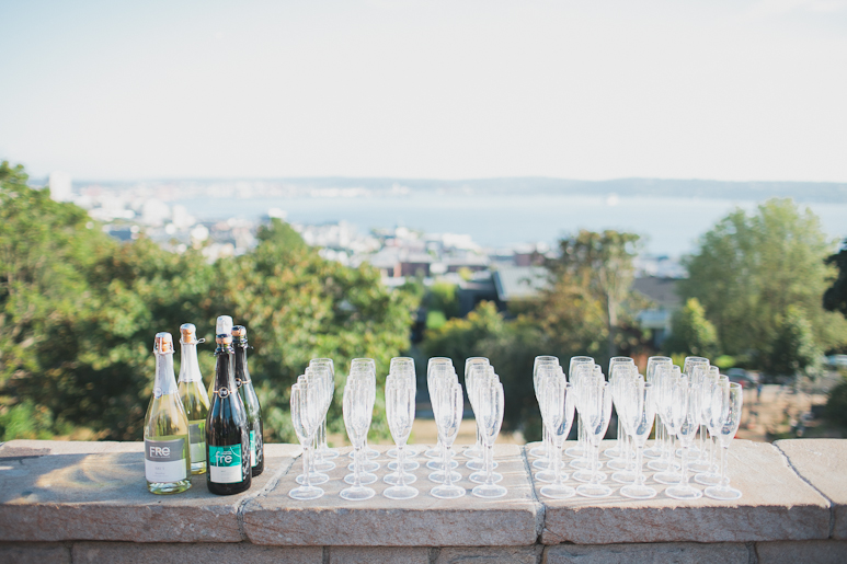 Wedding toast at Kerry Park in Seattle